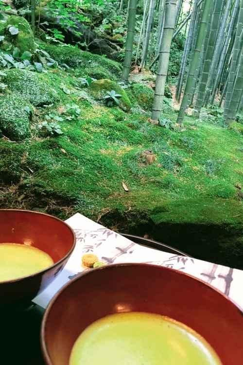 報国寺で抹茶