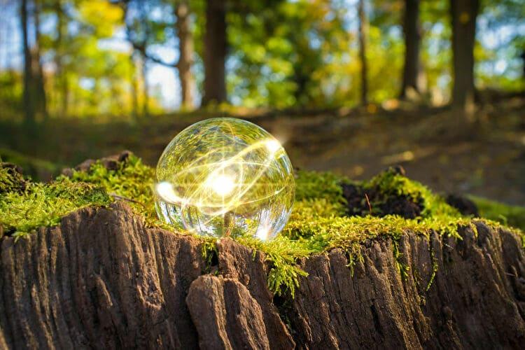 森林の中の水晶玉